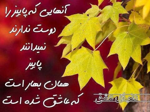 دل نوشته6