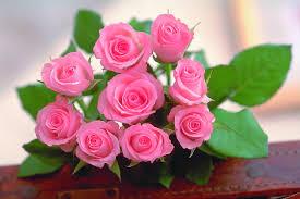گل ورودی